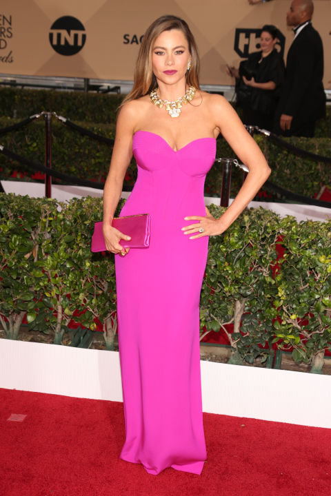 SAG-Awards-2016-Red-Carpet-Sofia-Vergara