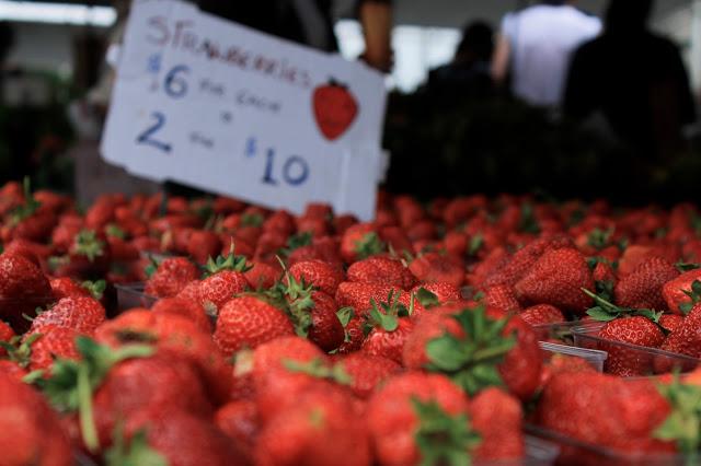 June Photo Diary ~ Mini Moments from the Union Square Farmer's Market