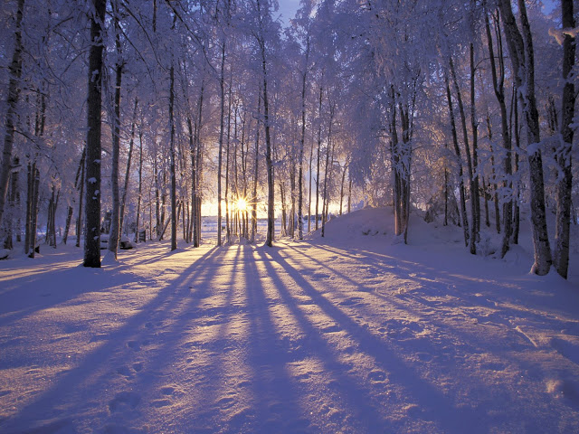 Hooray for the Winter Solstice!