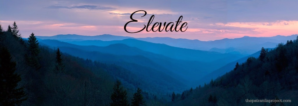 Elevate-Word-for-the-Year-2015-Patranila-Project