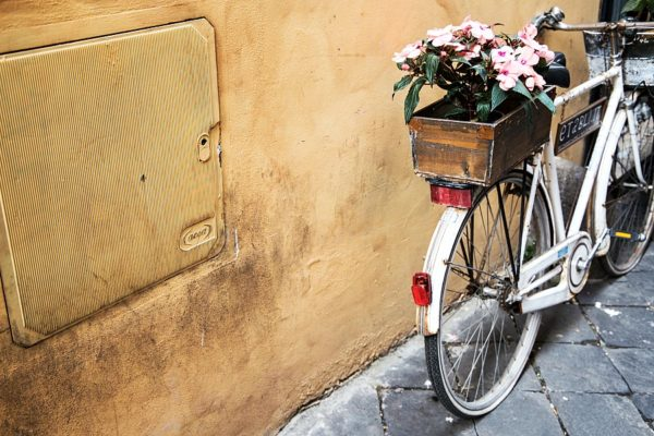 summer-weekend-bicycle-with-flowers-the-patranila-project