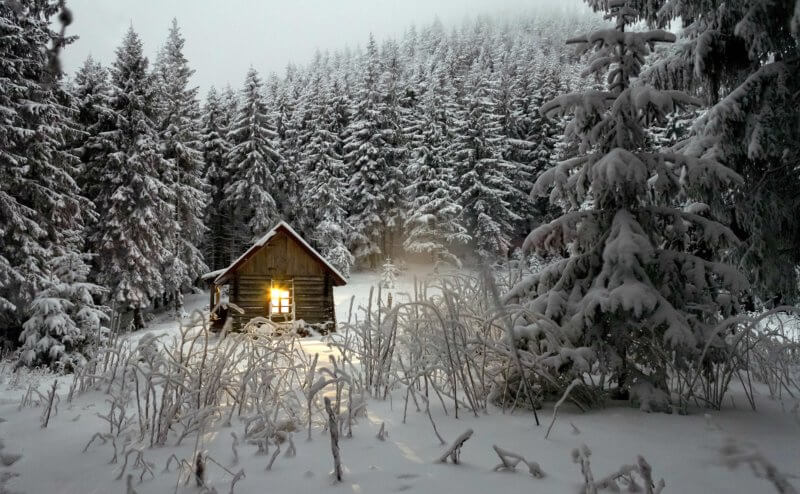 patranila-project-winter-hibernation