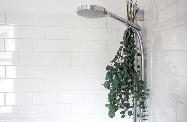 eucalyptus-shower-spa-bathroom