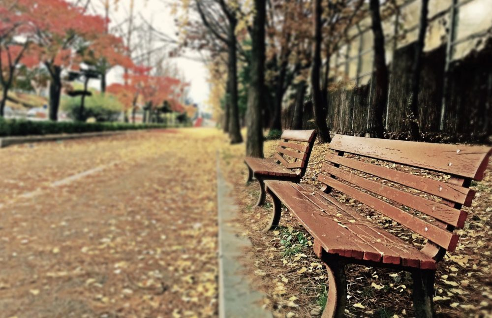 favorite-things-about-autumn