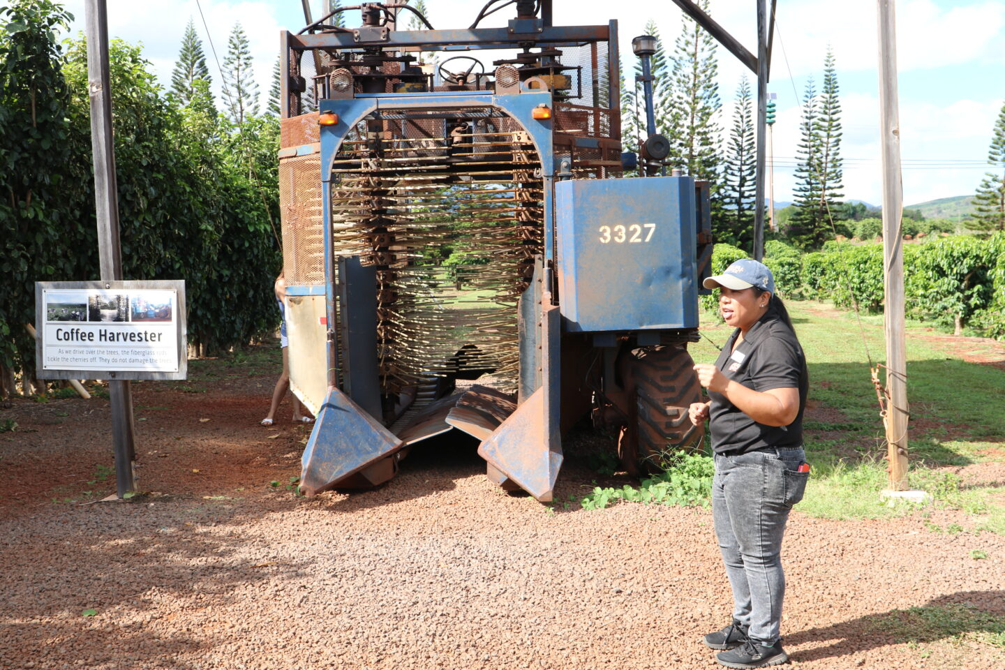 kauai coffee harvester machine
